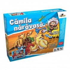 Joc de Indemanare - Camila naravasa - Jocuri Logica si inteligenta Noriel