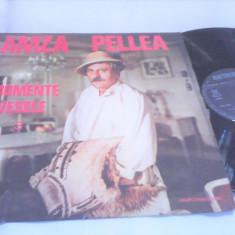 DISC VINIL AMZA PELLEA MOMENTE VESELE EXE 03281 RARITATE!!!!STARE FOARTE BUNA - Muzica soundtrack