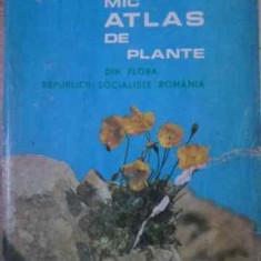 Mic Atlas De Plante Din Flora Republicii Socialiste Romani - I. Todor, 391911 - Carti Agronomie