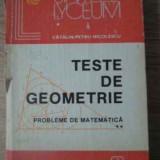 Teste De Geometrie Probleme De Matematica Vol.2 - Catalin-petru Nicolescu, 391935 - Carte Matematica