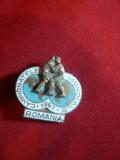 Insigna Campionatele Mondiale de Lupte Bucuresti 1967 , metal si email , L=2,6cm