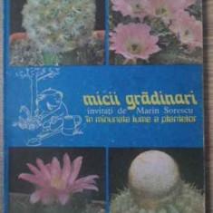 Micii Gradinari In Minunata Lume A Plantelor - S.copacescu B.bobirnac V.grigoras, 391900 - Carti Agronomie