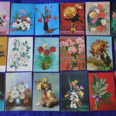 Lot 18 Vederi Flori (Carti postale romanesti vechi, Vederi), Fotografie, Europa