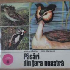 Pasari Din Tara Noastra - Nicolae Saftoiu, Matei Talpeanu, 391888 - Carti Agronomie