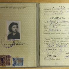 BDA - DIPLOMA DE ABSOLVIRE A SCOLII TEHNICE DE COMERT - 1953 - PIESA DE COLECTIE - Diploma/Certificat