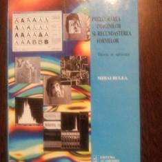 PRELUCRAREA IMAGINILOR SI RECUNOASTEREA FORMELOR -Mihai Bulra - 2003, 458 p. - Carte webdesign