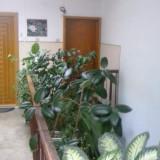 APARTAMENT 3 CAMERE, Tulcea zona centrala, str. Marasesti - Apartament de vanzare, 65 mp, Numar camere: 3, An constructie: 1986, Etajul 4