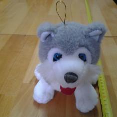 Husky, catel jucarie plus, cca. 22 cm - Jucarii plus