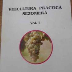Viticultura Practica Sezoniera Vol.1 Intretinerea Plantatiilo - Ion Alexandrescu Petru Pituc Vasile Babusanu Dumit, 392056 - Carti Agronomie