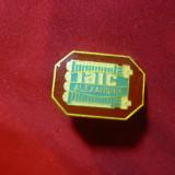 Insigna IAIC Alexandria h=2, 4 cm, metal si email