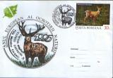 Romania - 1995-Plic oc.- Anul European al Ocrotirii Naturii - Cerbul carpatin