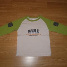 Bluza pentru copii baieti de 9-10 ani de la palomino, Marime: Masura unica, Culoare: Din imagine