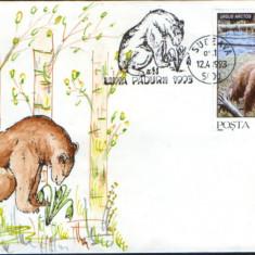 Romania - 1993 - Plic ocazional - Luna Padurii Suceava - ursul brun