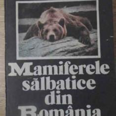 Mamiferele Salbatice Din Romania - Mitica Georgescu, 392516 - Carti Agronomie