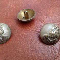 Lot 3 bucati - nasturi din metal cu coroana si leu / fide et fiducia !!!