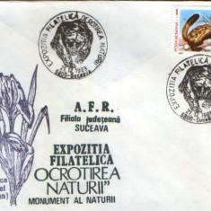 Romania - Plic oc.1989 - Ocrotirea Naturii Suceava - Ursul brun, dihor patat