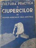 Cultura Practica A Ciupercilor - Paul Dimitriu ,392730