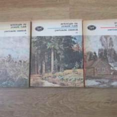 Antologie De Poezie Rusa Perioada Clasica Vol.1-3 - Colectiv, 392566 - Carte poezie