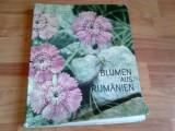 BLUMEN AUS RUMANIEN -DR. MIRCEA BICHICEANU -RODICA RARAU-BICHICEANU, Alta editura