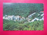 HOPCT 26821  BAILE HERCULANE   -JUD CARAS SEVERIN-CIRCULATA