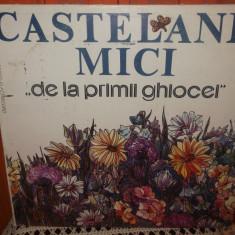 -Y- CASTELANII MICI - DE LA PRIMI GHIOCEI - DISC VINIL LP - Muzica pentru copii
