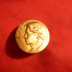 Insigna George Enescu ,bronz , d= 3 cm ,semnat G.Adac