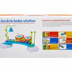 Jucărie bebe xilofon - Foosball