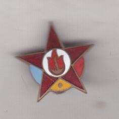 Bnk ins Insigna Pionier Steluta, Europa