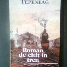 Dumitru Tepeneag - Roman de citit in tren (Institutul European, 1993)
