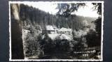 BAILE HOMOROD - JUDETUL HARGHITA - ANII 1940, Necirculata, Fotografie