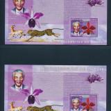 Congo 2006 48 Euro personalitati Nelson Mandela - set de colite nest. MNH - Timbre straine, Nestampilat