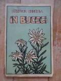 In Bucegi - Nestor Urechia ,537481