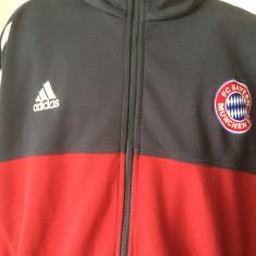 Bluza trening Adidas BAYERN MUNCHEN Campioana Germaniei si a Europei - Trening barbati Adidas, Marime: XL, Culoare: Multicolor