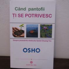 CAND PANTOFII TI SE POTRIVESC-OSHO - Carte dezvoltare personala