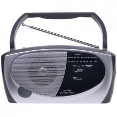 RADIO FM PORTABIL AZUSA MODEL PR-111 - Aparat radio