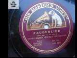 Marek Weber si orchestra sa disc patefon gramofon v foto!, Alte tipuri suport muzica