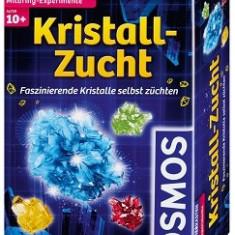 Experimente Pentru Acasa - Cristale Diverse Culori - Kosmos