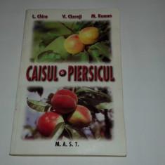 L.CHIRA \ V.CHEREJI \ M.ROMAN - CAISUL SI PIERSICUL - Carte gradinarit