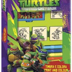 Trusa 4 Stampile - Testoasele Ninja - Jocuri arta si creatie