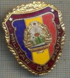 "ZET 769 INSIGNA ,,MILITAR DE FRUNTE"" - PERIOADA RSR - PENTRU NOSTALGICI"