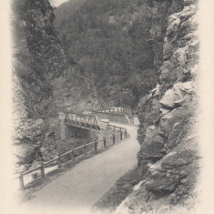 PETROSANI, SALUTARI DIN PETROSANI, CLASICA, VEDERE GENERALA - Carte Postala Transilvania pana la 1904, Necirculata, Printata