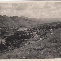 PETRILA VEDERE GENERALA FOTO JOANOVITS PETROSANI - Carte Postala Transilvania 1904-1918, Necirculata, Fotografie
