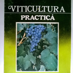 Ioan Neamtu - Viticultura practica - Carti Agronomie