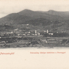 PETROSANI, SALUTARI DIN PETROSANI, CLASICA, VEDERE GENERALA CU MUNTII PARANG - Carte Postala Transilvania pana la 1904, Necirculata, Printata