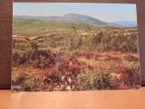 SUEDIA - PEISAJ DIN NORRLAND- FARGERNAS LAND STENFJALLET- NECIRCULATA,TIMBRATA, Fotografie