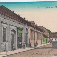 LIPOVA ARAD STRADA PRINCIPALA MAGAZINE - Carte Postala Crisana dupa 1918, Necirculata, Printata