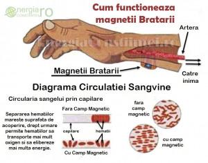 Bratara Magnetica Terapeutica din CUPRU cu Magneti Neodim - cod BRA026