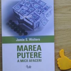 Marea putere a micii afaceri Jamie S Walters - Carte de vanzari