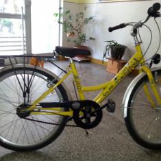Vand bicicleta Pegas - Bicicleta retro, 20 inch, Numar viteze: 3