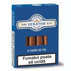 Tigari de Foi Senator 55 grame pachet cu tutun sub forma de tigari